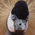 East African Crowned Crane 6 by Ernie Echols