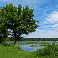 East Harbor State Park - Scenic Overlook 2 by Shawna Rowe