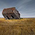 East Montana Texture by Leland D Howard