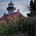 East Point Lighthouse by Joan Carroll
