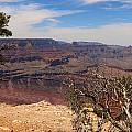 East Rim Grand Canyon by Christiane Schulze Art And Photography