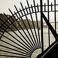 East River Spoke - New York City by Madeline Ellis