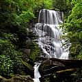 Eastatoe Falls II by Carol Montoya