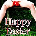Easter Card 3 by Guy Pettingell