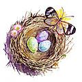 Easter Colors Bird Nest by Irina Sztukowski