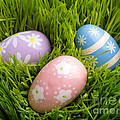 Easter Eggs in the grass by Edward Fielding