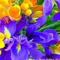Easter Flowers by Bruce Nutting