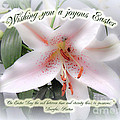 Easter Greeting Card - White Lily With Quote by Mother Nature