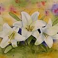 Easter Lilies by Brett Winn