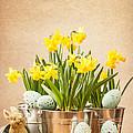 Easter Setting by Amanda Elwell