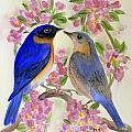 Eastern Bluebird by Donna Walsh