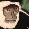 Eastern Colobus Monkey by Renee Michelle Wenker