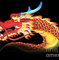 Eastern Dragon by Melissa A Benson