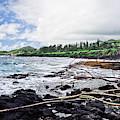 Eastern Shore Of Maui by Blake Burton