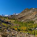 Eastern Sierras 11 by Richard J Cassato