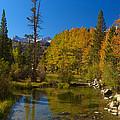 Eastern Sierras 16 by Richard J Cassato