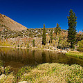 Eastern Sierras 18 by Richard J Cassato