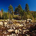Eastern Sierras 21 by Richard J Cassato