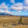 Eastern Sierras 29 Pano by Richard J Cassato