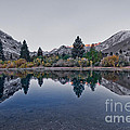 Eastern Sierras Reflection by Mae Wertz