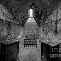 Eastern State Penitentiary Bw by Michael Ver Sprill