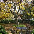 Easton Garden by Brian Wallace