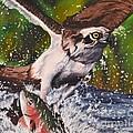 Easy Catch by John Huntsman