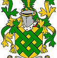 Eaton Coat Of Arms Irish by Heraldry