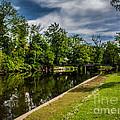 Eaton Rapids Island Park by Grace Grogan