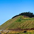 Ebey's Bluff by Rick Lawler