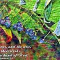 Ecclesiastes 9 1 by Michelle Greene Wheeler