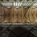 Ecclesiastical Ceiling No. 1 by Joe Bonita