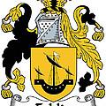 Echlin Coat Of Arms Irish by Heraldry
