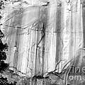 Echo Canyon Bw by Tim Richards