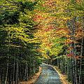 Echo Lake Road by Michael Kirk