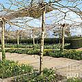 Eden Spring Garden by Paul Felix