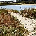 Edgartown Lighthouse by Carol Groenen