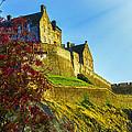 Edinburgh Castle  by Hal Halli