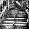 Edinburgh Steps by Liz Leyden