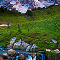 Edith Creek by Inge Johnsson