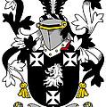 Edney Coat Of Arms Irish by Heraldry