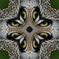 Eery Eyes - 1 by Patsy Zedar