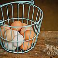 Egg Basket by Carol Sullivan