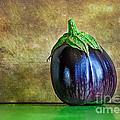 Eggplant by Kaye Menner
