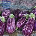 Eggplants by David Kay