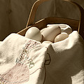 Eggs In A Basket Sepia by MM Anderson