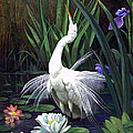 Egret And The Butterfly by Edward Skallberg