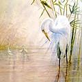 Egret by Ben Kiger