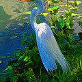 Egret In Blue by Mike Darrah