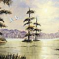 Egrets Over Wakulla Springs by Bill Holkham